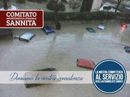 perizia_alluvione